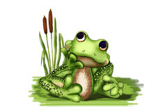 Dreaming of a frog. Green frog sitting on the grass in the swamp and dreams Royalty Free Stock Photography