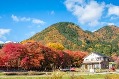 Dreaming house with maple tree corridor and rear mountain. Colorful stock photos