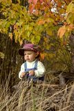 Little boy playing with leaves at autumn park. Dreaming little boy sitting under trees with red leaves in fall Stock Photo