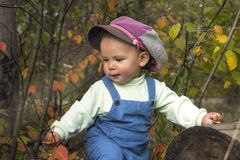 Little boy playing with leaves at autumn park. Dreaming little boy sitting under trees with red leaves in fall Royalty Free Stock Photo