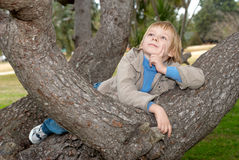 The dreaming little boy on a tree. Royalty Free Stock Photography