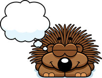 Dreaming Little Porcupine Royalty Free Stock Photos
