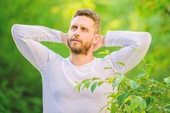Dreaming man in forest. daydreamer. ecological life for man. man in green forest. morning in nature. healthy lifestyle stock image