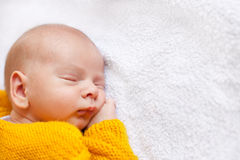 Dreaming newborn baby boy. Pretty dreaming newborn baby boy Royalty Free Stock Images