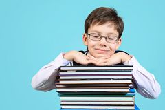 Dreaming schoolboy Stock Photography