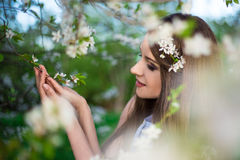 Dreaming young woman with blooming cherry tree Stock Image