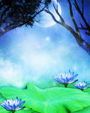 Dreamland. Fantasy background for your artistic creations and/or projects Royalty Free Stock Photography