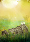 Dreamland. Fantasy background for your artistic creations and/or projects Stock Images