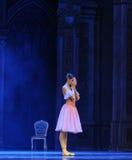 dreamland baleta dziadek do orzechów Zdjęcie Royalty Free