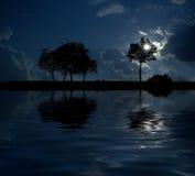 Dreamland em a noite Fotos de Stock Royalty Free