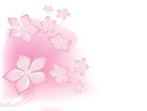 Dreamlike flowers Stock Image