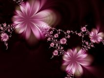 Dreamlike flowers. Flowers on a black background Royalty Free Stock Photo