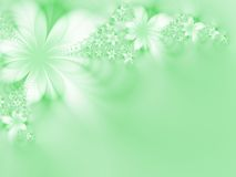 Dreamlike flowers. Green flowers on a green background Stock Image