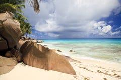 Free Dreamlike South Seas Beach Royalty Free Stock Photo - 22250685