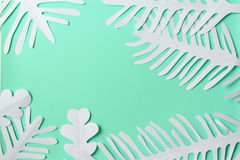 Dreams of the sea. Paper algae on a mint background Royalty Free Stock Images
