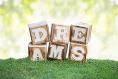 DREAMS sign made of wooden blocks on a grass Stock Photography