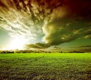Dreamscape绿色领域 图库摄影