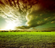 Dreamscape green fields. Sunset green fields landscape.Meadows dreamscape Stock Photography