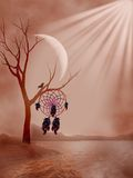 Dreamspack Royalty Free Stock Photo