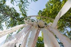 Dreamwatcher dans une forêt photographie stock libre de droits