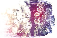 Dreamy and abstract image of cherry tree. double exposure effect. With watercolor brush stroke texture vector illustration