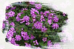 Dreamy and abstract image of flowers. double exposure effect with watercolor brush stroke texture. Dreamy and abstract image of flowers. double exposure effect stock illustration