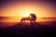 Free Dreamy And Misty Rural Landscape. Dawn Light. Stock Photo - 91493000