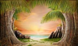 Dreamy beach landscape backgrund. Dreamy beach and palm tree landscape backgrund stock images