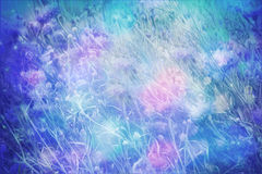 Dreamy beautiful background with meadow of flowers Royalty Free Stock Photography