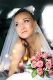 Dreamy beautiful bride Stock Photos