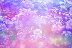 Dreamy beautiful floral background with bokeh lights Stock Images