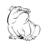 Dreamy bulldog. Black and white stylized illustration Stock Photography