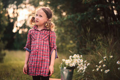 Dreamy child girl in plaid dress on the walk in summer day with bouquet of chamomile flowers Royalty Free Stock Image