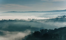 Dreamy countryside with fog Royalty Free Stock Photos