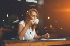 Dreamy female enjoying cup of tea while sitting in cozy coffee shop during her recreation time Royalty Free Stock Images