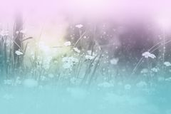 Dreamy floral theme royalty free stock photos