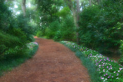 Dreamy Garden Path. Inviting dreamy garden path leads back into the unknown Royalty Free Stock Image