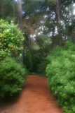 Dreamy Garden Path. Inviting dreamy garden path leads back into the unknown Royalty Free Stock Images