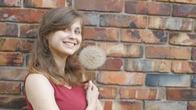 Dreamy girl with fluffy big dandelion on the background of the red brick wall, beautiful young woman smilng and flirting, female e. Motions, positive mood stock video footage
