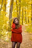 Dreamy girl with long hair in knit sweater. Beautiful fashion woman in autumn red dress with falling leaves over nature. Background. Autumn woman royalty free stock images