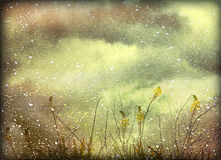 Dreamy Grunge Nature Background. Dreamy nature landscape photo collage and manipulation digital technique style artwork in blurred mood and pale warm tones vector illustration