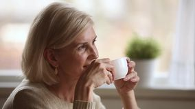 Dreamy happy middle aged woman looking away drinking morning coffee