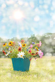 Dreamy image of spring flowers in a square pot Royalty Free Stock Images