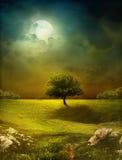 Dreamy Landscape Stock Photo