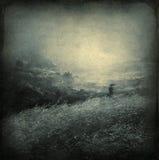Dreamy landscape Stock Images