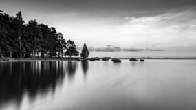 Dreamy nordic midsummer landscape black and white royalty free stock image
