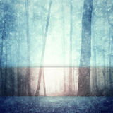 Dreamy realistic snowfall in forest greeting card Royalty Free Stock Photo