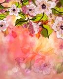 Dreamy Sakura Royalty Free Stock Images