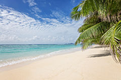 Dreamy sandy beach. With blue sky Stock Image