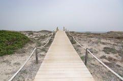 Dreamy soft paradise beach Stock Photos